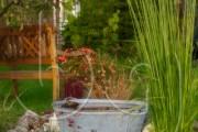 BG_2010_P7F3942