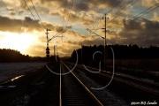 BG_2011_P79_F8078