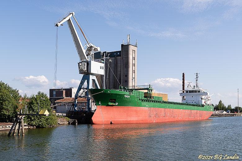 Eken i Vänersborgs hamn