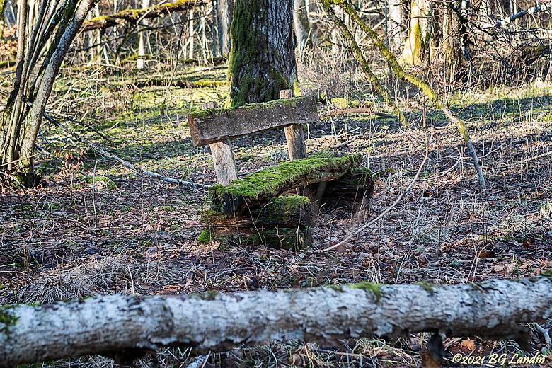 En gammal träbänk