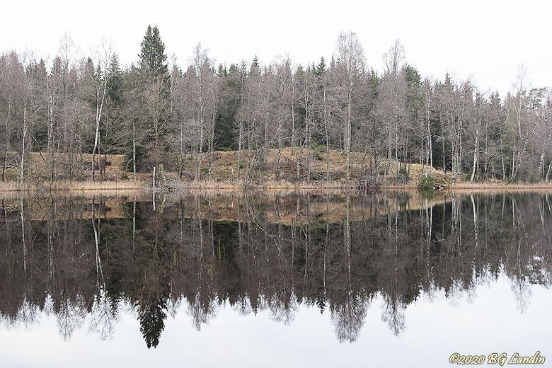 Högsjön i Risveden