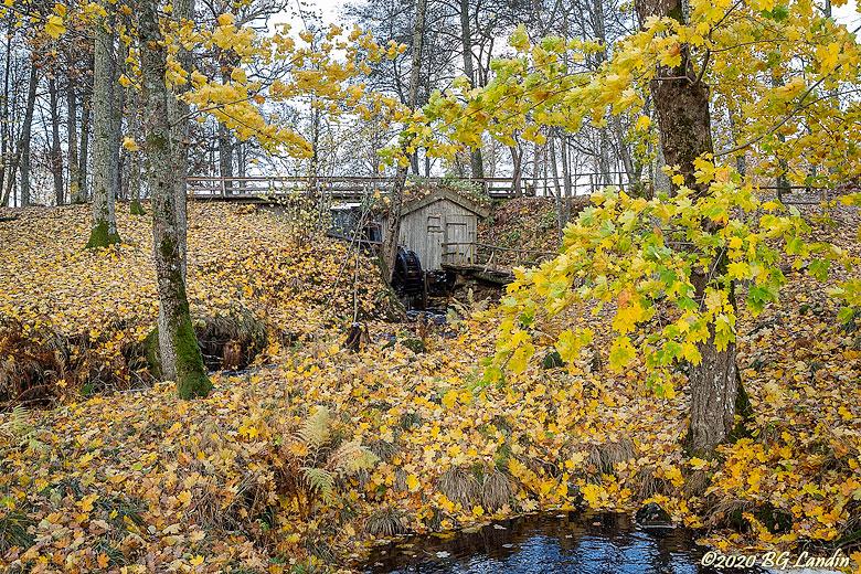 Höst i Gräfsnäs slottspark