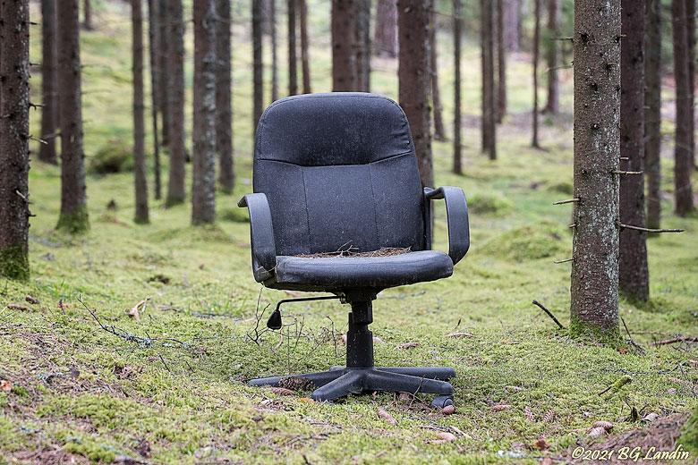 Ett kontor i skogen