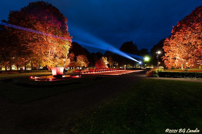 Lights i Plantaget