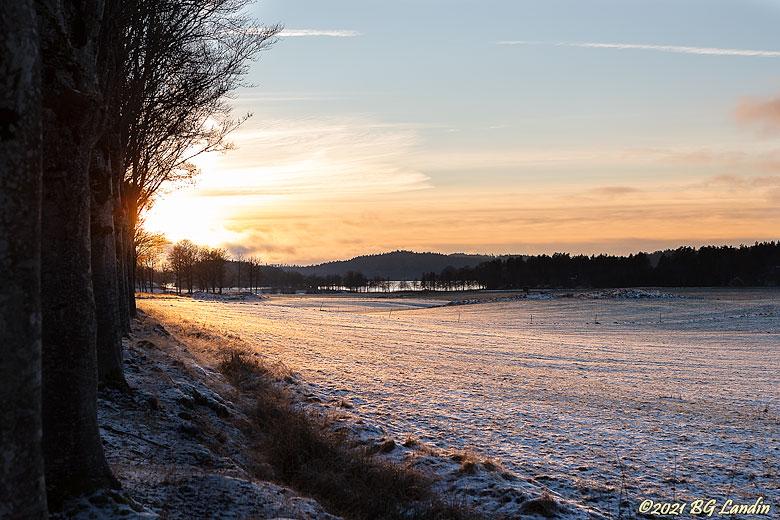 Solnedgång över snötäckta fält