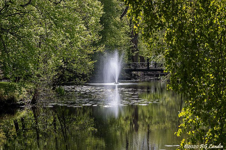 Vårgrönt i Nolhaga