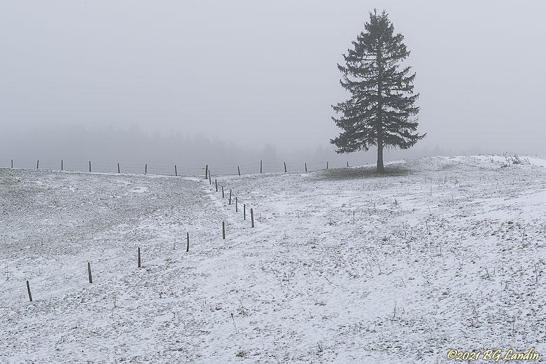 Vintermiljö