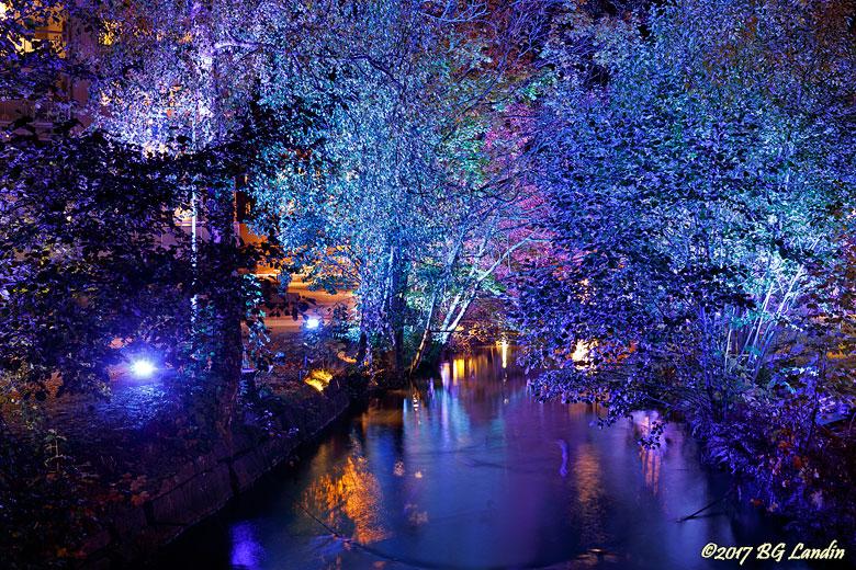 Blå träd vid Lillån