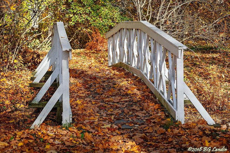 Lövprydd bro till Sophieholme