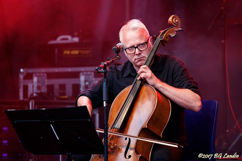 Cellist i Buddha of Suburbia