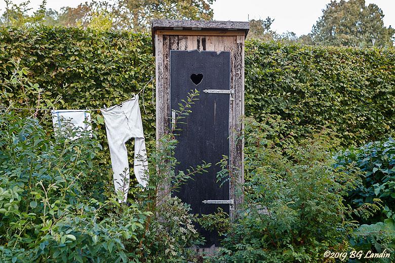 Ett dass i Tomas trädgård