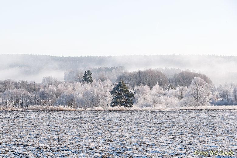 Frostigt vinterlandskap