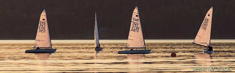Fyra segelbåtar
