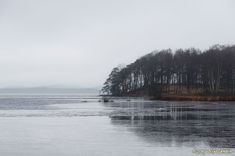 Gallvik