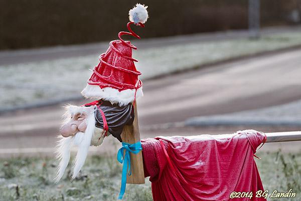 Julanpassad rondellhund