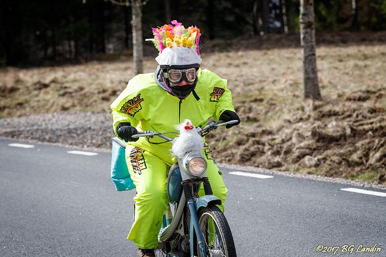 Kycklinggul Chickenracedeltagare