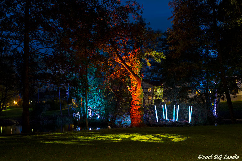 Lights in Alingsås 2016 - Nature Calling2