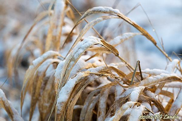 Lite snö och kyla gör underverk