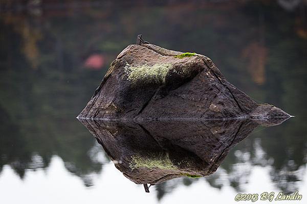 Speglad sten