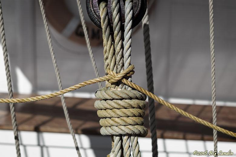Ordning och reda på rep och tampar