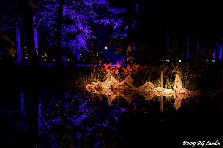 The Pond Köllera i nytt ljus