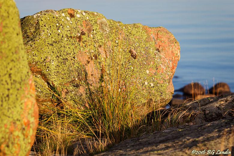 Röd och grön sten