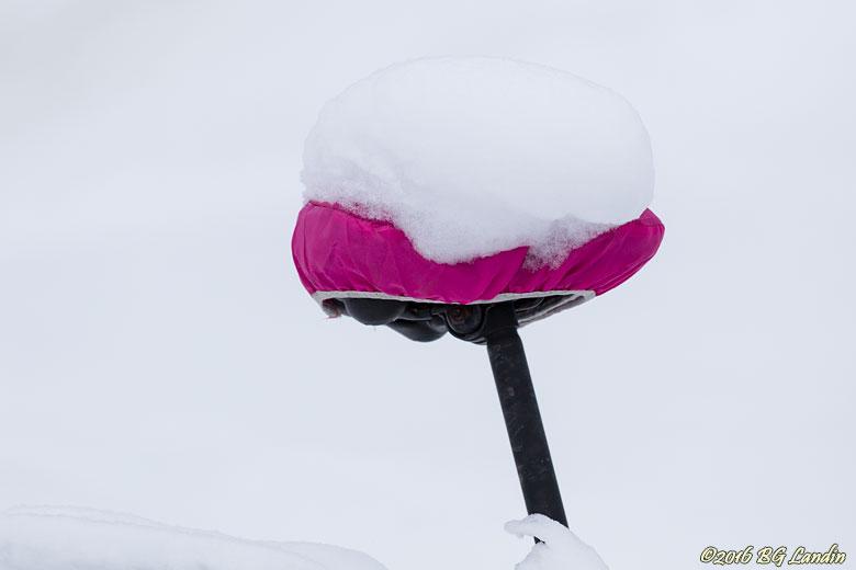 Nästan bara snövitt