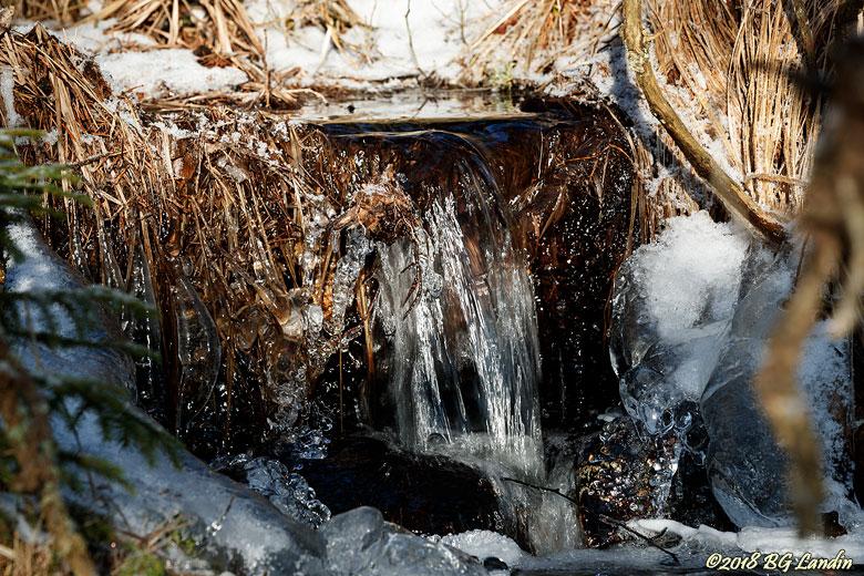 Muntert porlande vinterbäck