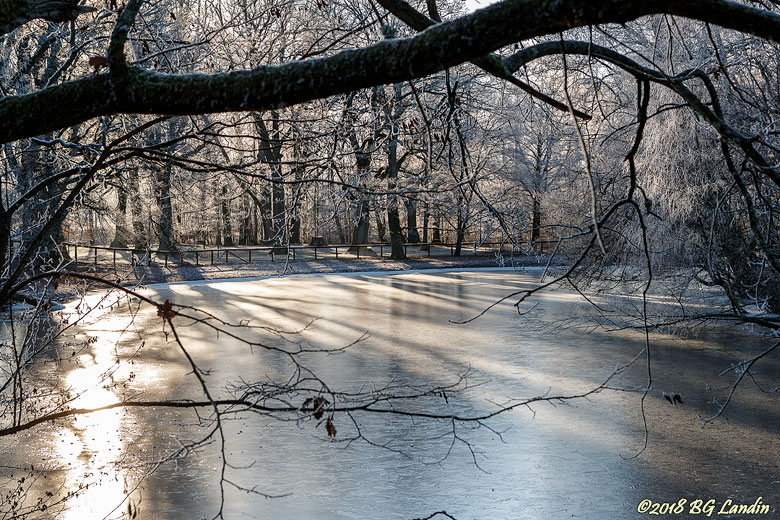 Vinterdag i Nolhaga
