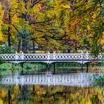 Bro i höstlandskap