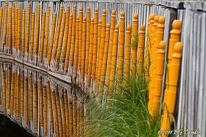 Bambu?