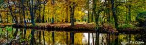 Vattenspegel i Nolhaga