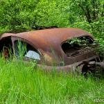 Bilvrak i sommargrönskan