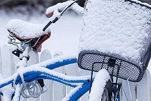 Snoig_cykel_300_P7F0141